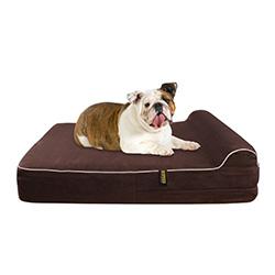 camas ortopédicas para perros