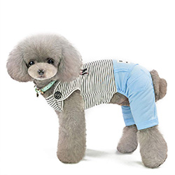 pijama para cachorritos