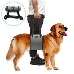 arnes para perros problemas patas traseras