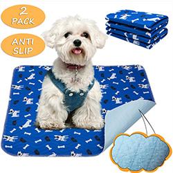 empapadores absorbentes para cachorros