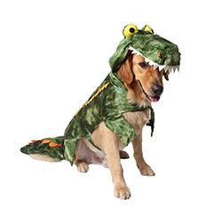 disfraces de halloween para chihuahuas