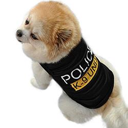disfraz carnaval para perros