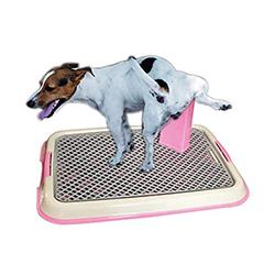 comprar inodoro para perros