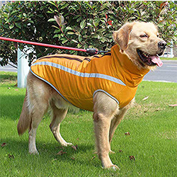 impermeable perro grande