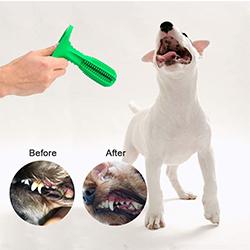 cepillo bucal para perros