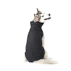 abrigos para perros pequeños