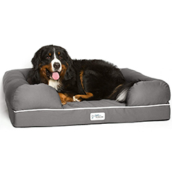 comprar cama para perros ancianos