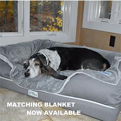 comprar cama para perros mayores