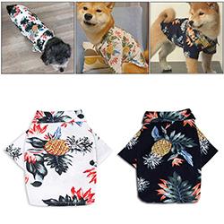 camisa para perros
