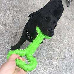 juguetes para la mordida del perro