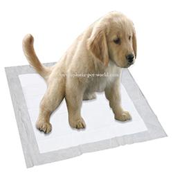 empapadores para la educacion del perro