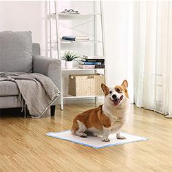 toallas absorbentes para perros