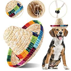 gorras para perros pequeños