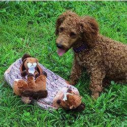 comprar juguete con sonido para perros