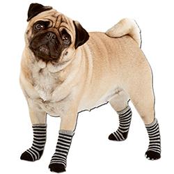 Karlie-calcetines-para-perros-1