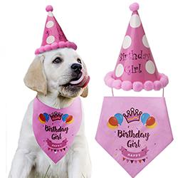 sombrero de cumpleaños para perros
