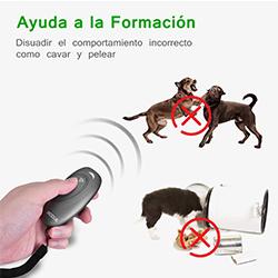 ultrasonidos para entrenamiento de perros