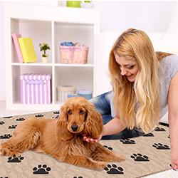 comprar empapadores para perros lavables