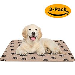 toallitas absorbentes y reutilizables para perros
