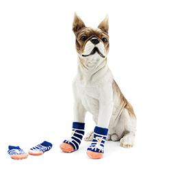 donde comprar calcetines antideslizantes para perros