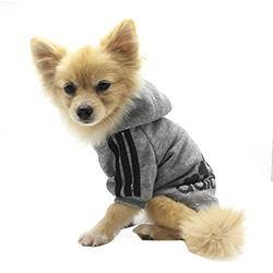 sudadera para perritos