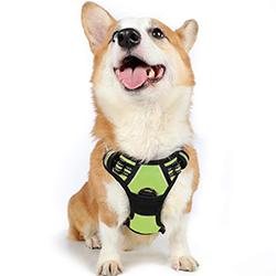 arneses de pecho para perros