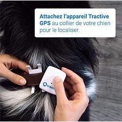 rastreador gps perros