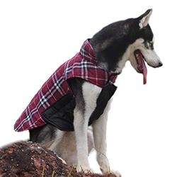 abrigo reversible para perros grandes