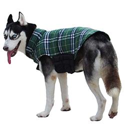 comprar chaquetas para perros baratas