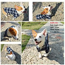 comprar camisa para perros barata