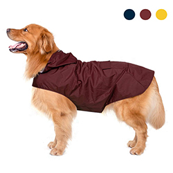 impermeables para perros