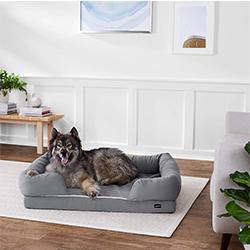 sofas para perros