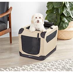 transportines seguros para perros
