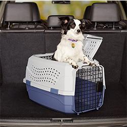 transportin de transporte para perros