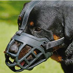 mejor bozal para perro