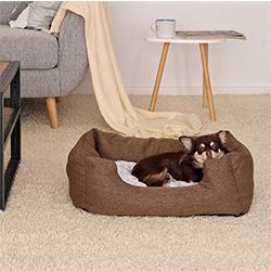 sofas de perros