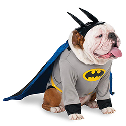 Disfraz-de-batman-para-perros-1