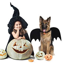 disfraces para perros halloween