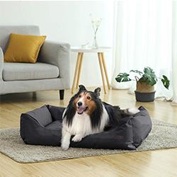 sofa para perros