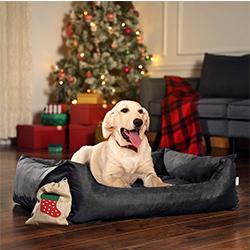 sofas para mascotas