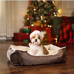 sofas para perros baratos