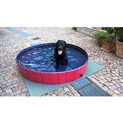 piscinas para perros grandes