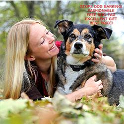 antiladridos para perros opiniones