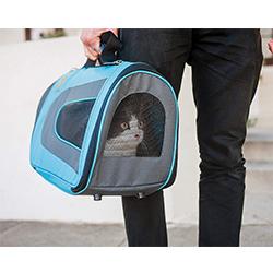 macuto para gatos