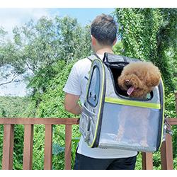bolsa de transporte para gatos