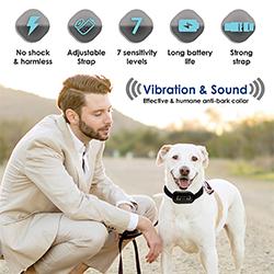 collares de perros antiladridos